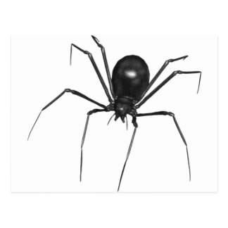 Araña espeluznante negra grande 3D Postal