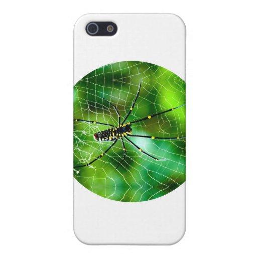 Araña gigante del Argiope iPhone 5 Cárcasas