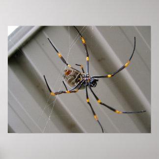 Araña gigante póster