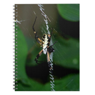 Araña grande del tejedor del orbe libro de apuntes con espiral