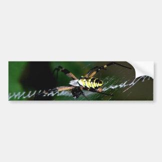 Araña grande del tejedor del orbe pegatina para auto
