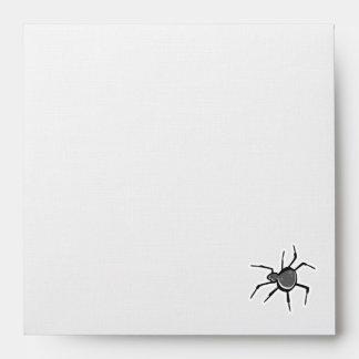 Araña linda; Fresco