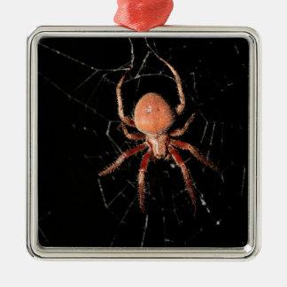 Araña manchada del tejedor del orbe adorno navideño cuadrado de metal
