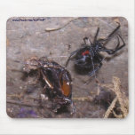 Araña negra+Mousepad Tapete De Ratones