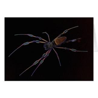 Araña negra que se arrastra y que se arrastra tarjeta de felicitación