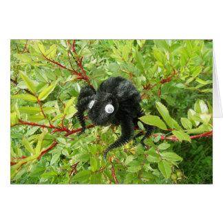 Araña normal de Transilvania Tarjeta
