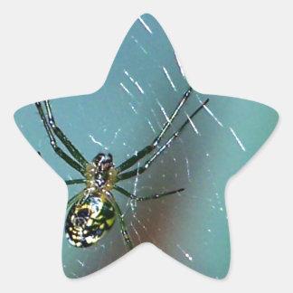 Araña que teje del orbe de la huerta pegatina en forma de estrella