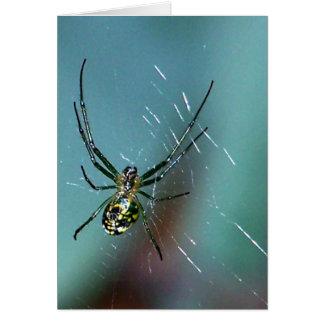 Araña que teje del orbe de la huerta tarjeta de felicitación