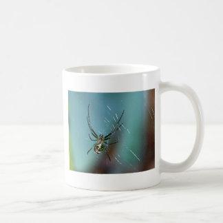 Araña que teje del orbe de la huerta taza de café