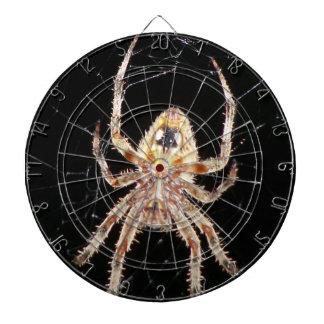 Araña que teje del orbe del jardín