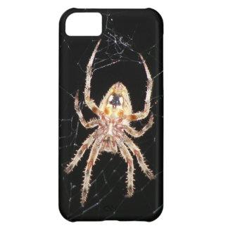 Araña que teje del orbe del jardín carcasa para iPhone 5C