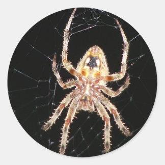 Araña que teje del orbe del jardín pegatina redonda