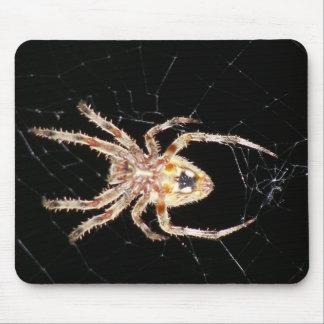 Araña que teje del orbe del jardín tapete de ratón