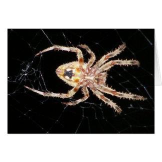 Araña que teje del orbe del jardín tarjeta de felicitación