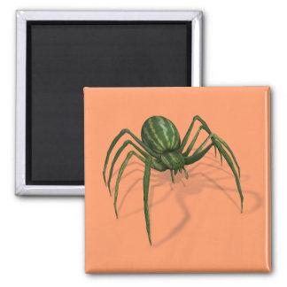 Araña rara de la sandía imán cuadrado