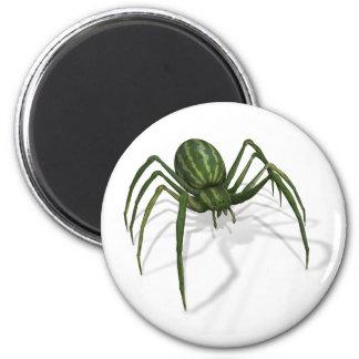 Araña rara de la sandía imán redondo 5 cm