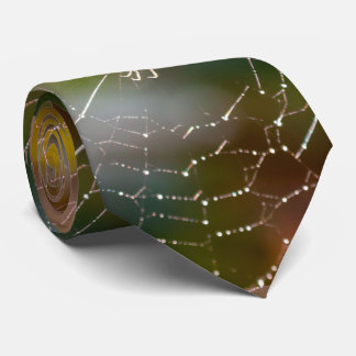 Araña y el lazo de los hombres de la fotografía de corbatas