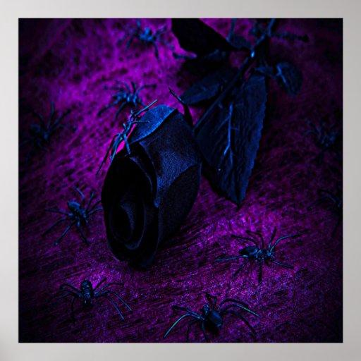 Arañas color de rosa, negras materiales negras póster