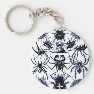 Arañas de los arácnidos de Haeckel en azul Llavero Redondo Tipo Pin