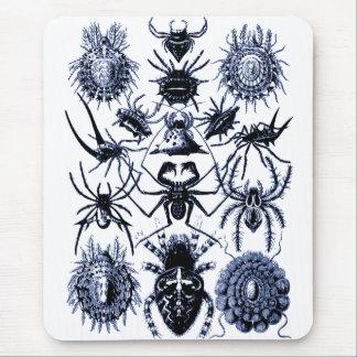 Arañas de los arácnidos de Haeckel en azul Alfombrilla De Ratón