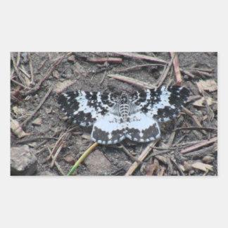 Arañas de los arácnidos de los insectos de Kooskoo Rectangular Altavoz