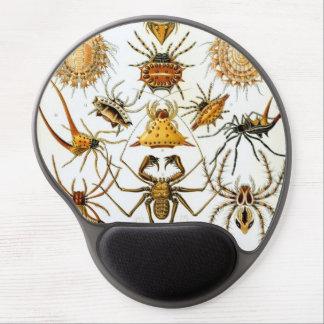 Arañas del vintage, arácnidos de Ernst Haeckel Alfombrillas De Ratón Con Gel