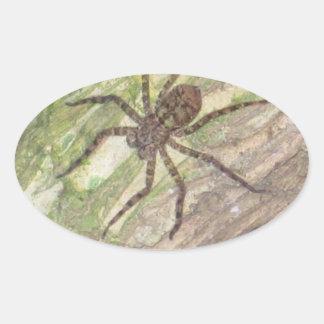 Arañas, escarabajos e insectos exóticos salvajes pegatina ovalada