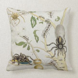 Arañas: Mygole, platea 18 de 'sobre de Voorteelin Cojín