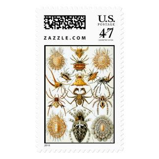 Arañas Timbres Postales