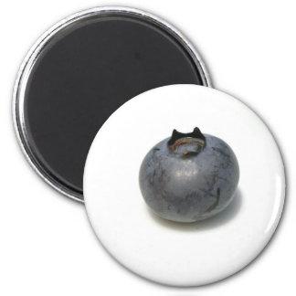 Arándano delicioso imán redondo 5 cm