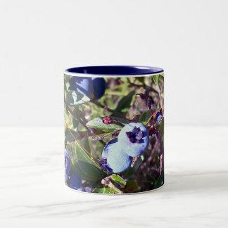 Arándanos deliciosos taza de café de dos colores