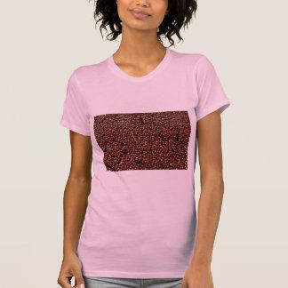 Arándanos en la cosecha, Plymouth, Massachusettes, Camisetas