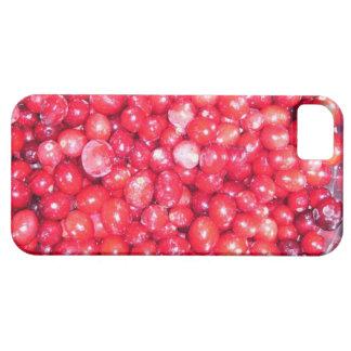 Arándanos iPhone 5 Case-Mate Carcasas
