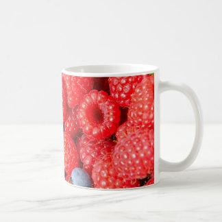 Arándanos y frambuesas de las fresas tazas