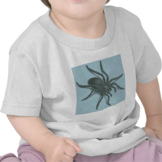 Aranea Avicularia araña cubana negra Camisetas