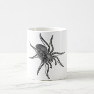 Aranea Avicularia, Black Cuban Spider Coffee Mug