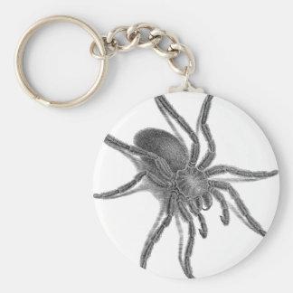 Aranea Avicularia Black Cuban Spider Keychain