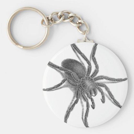 Aranea Avicularia, Black Cuban Spider Keychain