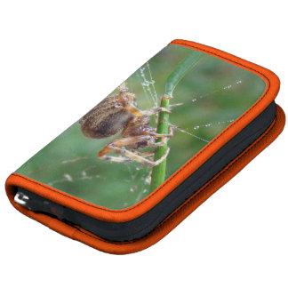 Araneus - Orb Weaver Spider Folio Planners