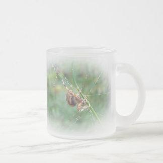 Araneus - Orb Weaver Spider Frosted Glass Coffee Mug