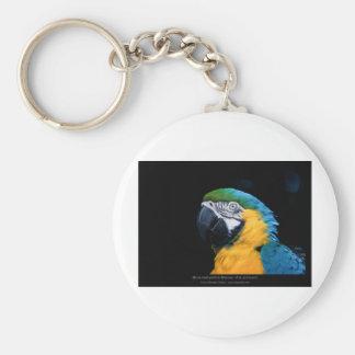 Ararauna del Ara - Macaw Azul-y-amarillo 01 Llavero Personalizado