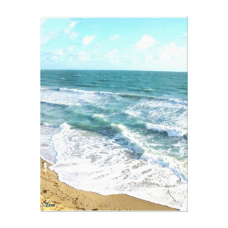 ARAS OCEANSIDE COLLECTION - OCEANIC BEAUTY CANVAS PRINT