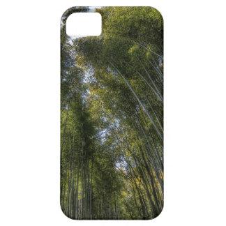 Arashiyama Bamboo Grove - Kyoto, Japan iPhone SE/5/5s Case