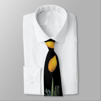Arba Minim (Four Species) Tie