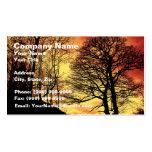 Árbol 1 de la puesta del sol de la tarde tarjetas de visita