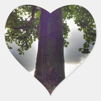 Árbol #1 pegatina en forma de corazón