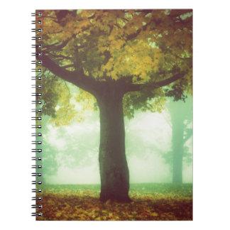 Árbol #2 libros de apuntes con espiral