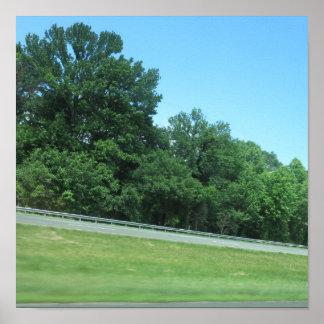 Árbol 99 del cielo del verde de la naturaleza de N Impresiones