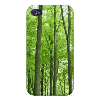 Árbol alto Forrest iPhone 4/4S Carcasas