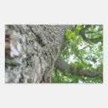 Árbol alto rectangular pegatina